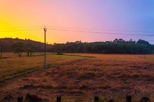 An Evening in my village